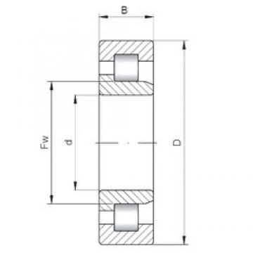 240 mm x 500 mm x 95 mm  ISO NJ348 cylindrical roller bearings