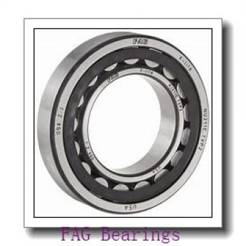 170 mm x 280 mm x 109 mm  FAG 24134-E1-2VSR-H40 spherical roller bearings